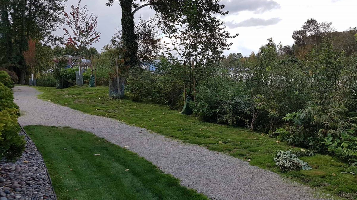 Shorewalk Habitat Restoration Project